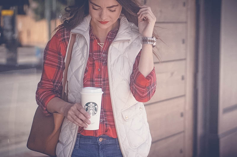 Treasure & Bon Plaid shirt, J Crew Quilted Vest